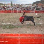 corridatoros_6